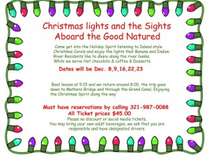 Christmas light flyer